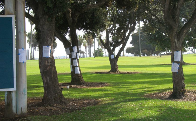 Poets Past and Present Collide at Mission Bay Park